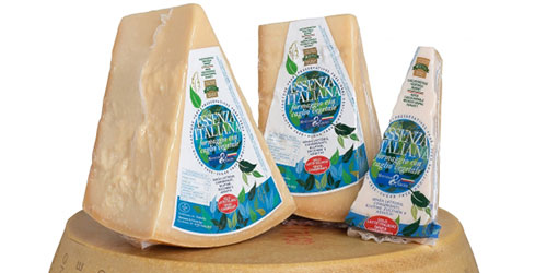 ESSENZA ITALIANA cheese with vegetable rennet